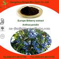 europa natural de extracto de arándano