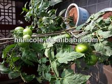 soil amendments clay soil organic fertilizer for artificial flower and aqua