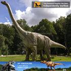 My Dino-Reliable reputation amusement park action figure dinosaur model toy