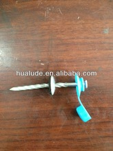 galvanized roof screw nail with plastic cap
