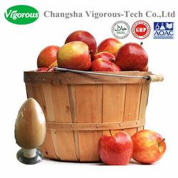 100% Natural Apple extract/Apple extract powder/apple pectin powder