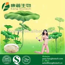 Hot sale herbal extract lotus leaf powder nuciferine for hot girl
