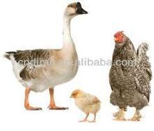 Veterinary Medicine Poultry Antibiotics Finished Product Sulfamonomethoxine Sodium Injection