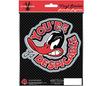 LOONEY TUNES DAFFY DESPICABLE - car sticker