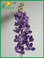 Venta al por mayor niza flores blancas orquídeas natural de la planta