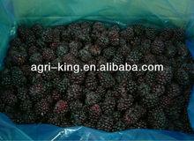 IQF Blackberry Fruit Market Prices