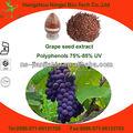Natürliche Traubenkern-Extrakt( hohen ORAC-Wert)