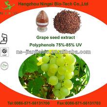 Vitis Vinifer sell grape seed extract alcohol 95