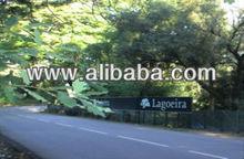 Golden Visa Lagoeira Project