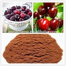 Supply Asiatic Cornelian Cherry Fruit Extract