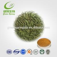 Green tea extract powder,tea polyphenol,catechin,EGCG free sample