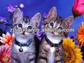 Gros chats 3D lenticulaire image d'impression