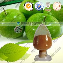 Apple peel extract / apple skin extract/Phloretin