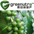 grano de café verde extracto