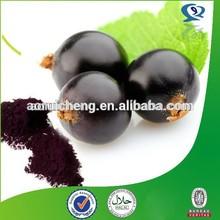 Black currant oil, black currant seed, black currant seed oil