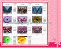 venta al por mayor zapatos de pvc flor decoración de los zapatos jibbitz