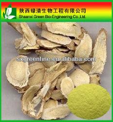 Baical Skullcap Root Extract Baicalin 85%