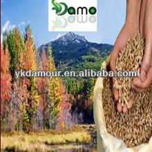 High Heat Sawdust Wood Pellets DIN Plus