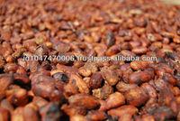 Indonesian Origin Sun Dried Cocoa / Cacao Bean