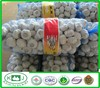 High Quality China Wholesale Natural Fresh Garlic
