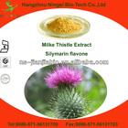 silybum marianum milk thistle seed