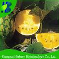 2014 sıcak satış sarı çekirdeksiz karpuz çekirdeği