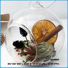 P Wholesale glass terrarium ,glass globe hanging terrarium