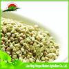 new green buck wheat / export quality Aisa bulk buckwheat husked