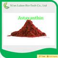 2013 nuevo de alta calidad suplemento la astaxantina