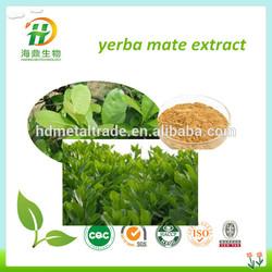 yerba mate extract