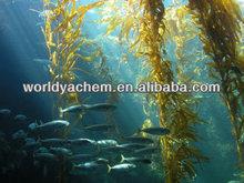 Brown Algae Extract/ Fucoxanthin 10%UV CAS: 3351-86-8