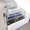 pig cages equipment farrowing crates