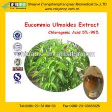 Cortex Eucommia Leaf Extract Powder