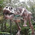 Animais decorativos réplica fóssil de dinossauro