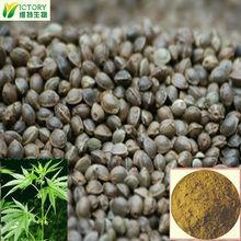100% hemp Cannabis sativa L. seed