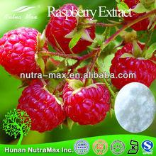 Palmleaf Raspberry Extract, Palmleaf Raspberry Extract 10:1, Palmleaf Raspberry Extract Powder