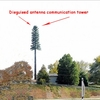 Wireless pine tree tower Cellular stealth pine tree