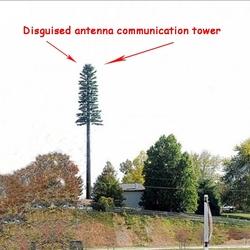 Wireless pine tree tower Cellular stealth pine tree