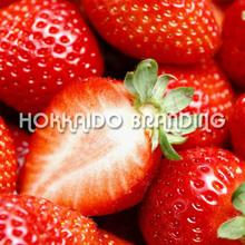 Fresh Kentaro Strawberry 1kg