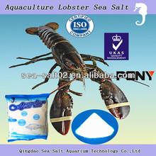 Sea Horse Aquaculture Sea Salt