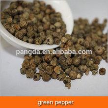 green pepper 2015