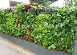 vegetable garden soil organic vegetable amendments