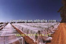 100% virgin plastic knitted vineyard bird netting