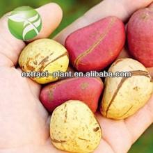 Supply high quality Kola Nut Extract 10% 20%