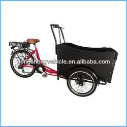 2014 electric easy bike 3 wheelers