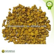 High quality Radix Scutellariae Extract 2014 new product