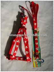 new pet collar and leash, dog collar pet grooming