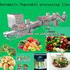 leafy vegetable processing machine/frozen vegetable processing line/hot sale fruit processing line