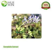 Organic Corydalis Extract Relieve Pain