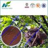 manufacturer CITES certificate pygeum africanum extract